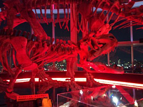 dinosaurnight.jpg